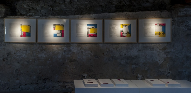 Soluzione-per-il-rosa-exhibit-view